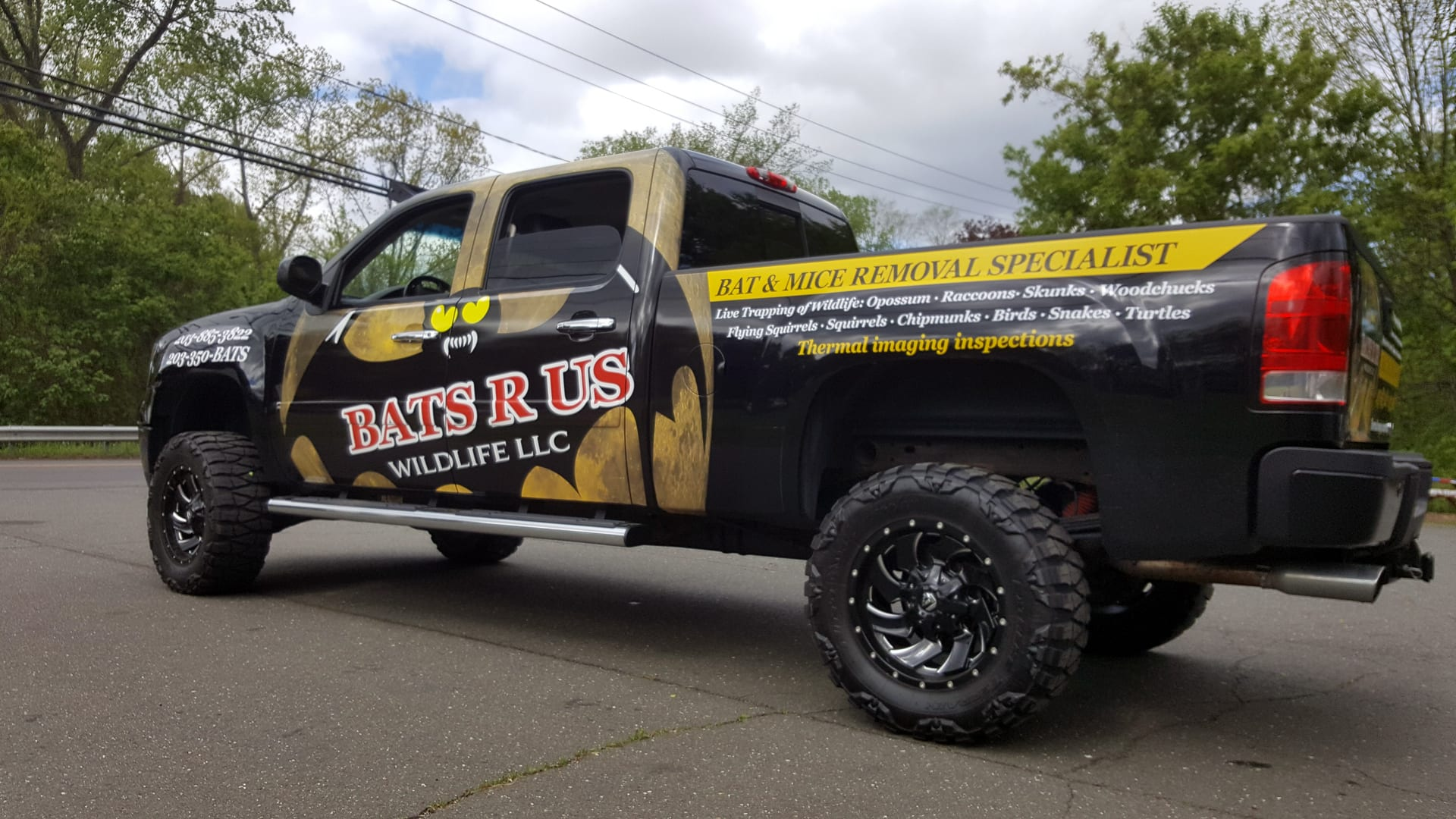 Bats R Us - Full Truck Wrap